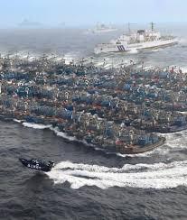 中国漁船のサンゴ密漁
