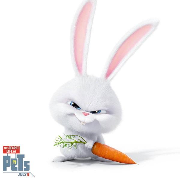 PETs2(ペット2)の感想をスノーボール編のネタバレとあらすじを交えてお届け!